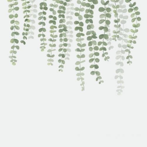 Natur 4189